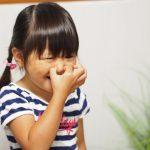 幼児期の悩み 好き嫌い、どうやってつきあえばいい??