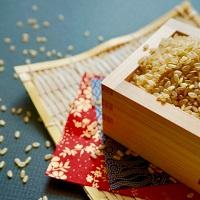 玄米は何歳から食べられる?