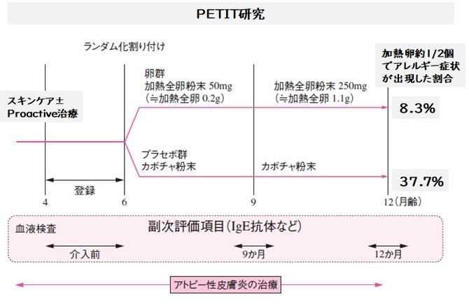 PETIT研究