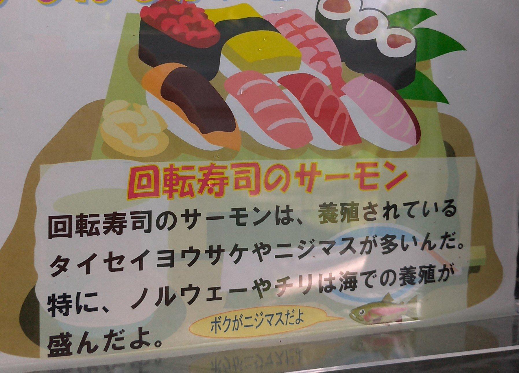 回転寿司のサーモンはニジマスであり鮭ではない