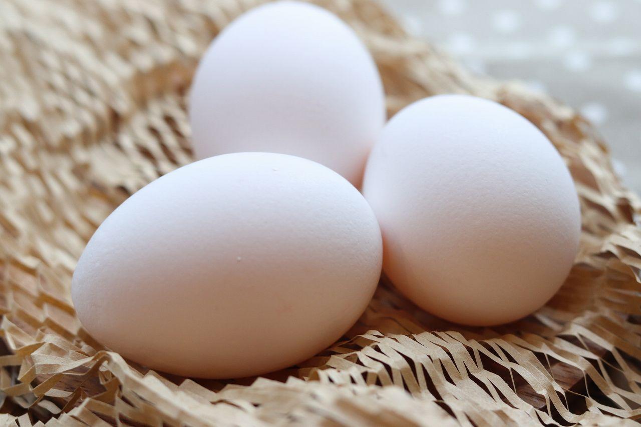 卵 アレルギー 離乳食